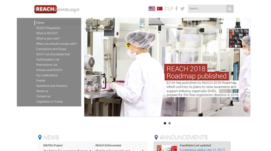 Reach Immib Homepage Screenshot link to http://www.reach.immib.org.tr