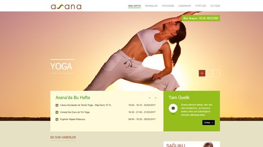 Asana Homepage Screenshot
