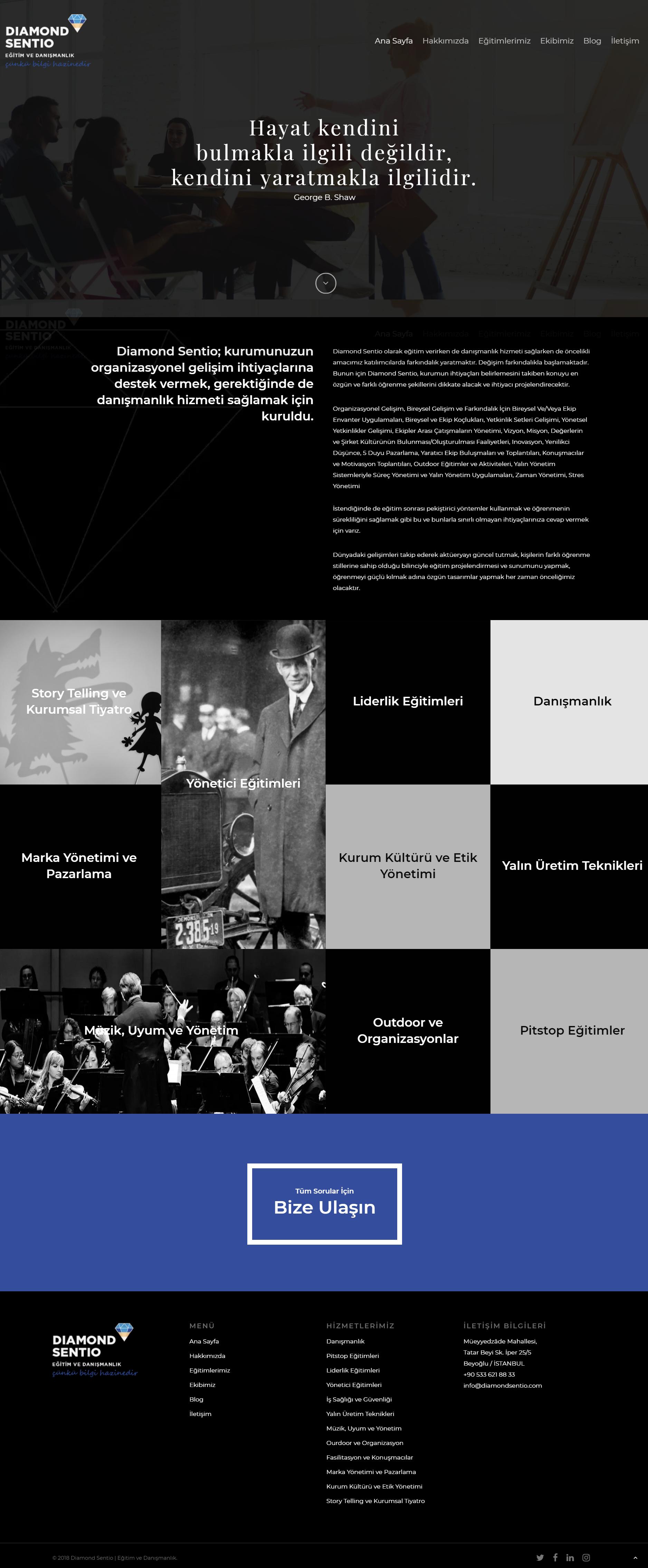 artcore-digital-diamond-sentio-website